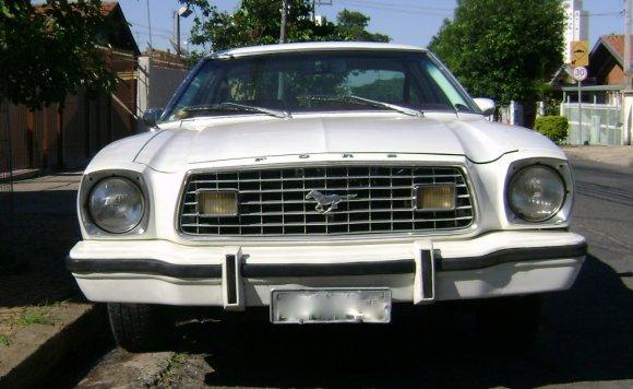 Mustanguinho